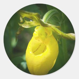 Yellow Lady Slipper Classic Round Sticker
