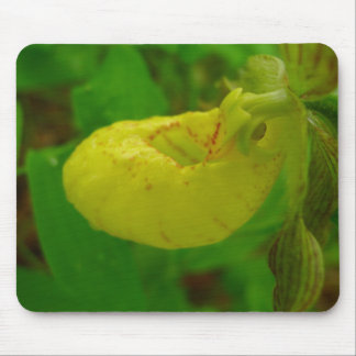 Yellow Lady Slipper Mouse Pad
