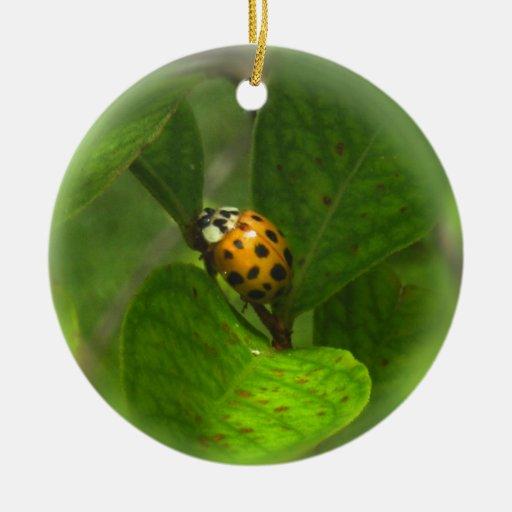 Yellow Ladybug Ornament