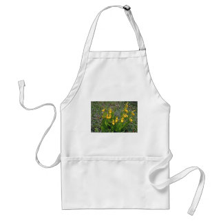 Yellow Ladyslipper Orchid flowers Apron