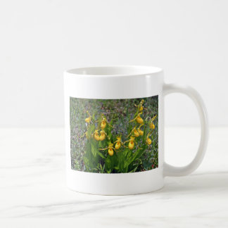 Yellow Ladyslipper Orchid flowers Classic White Coffee Mug