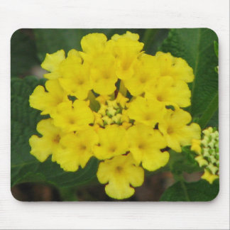 Yellow Lantana Mouse Pad