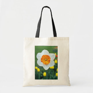 Yellow Large-cupped Narcissi, 'Professor Einstein' Budget Tote Bag