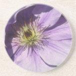 Yellow Lavender shadows flowers Coasters