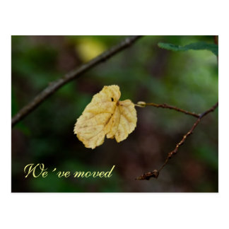 Yellow leaf we´ve moved postcard