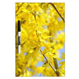 yellow leaves   Folhas amarelas com gotas Grünes B Dry-Erase Board