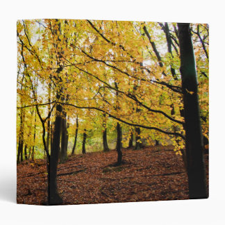 Yellow leaves forest 3 ring binder