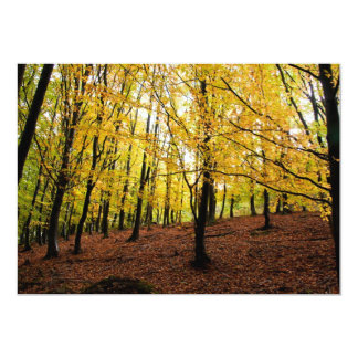 Yellow leaves forest card
