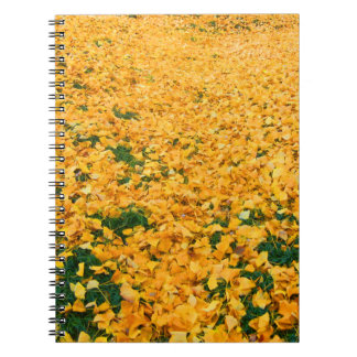 Yellow leaves notebooks