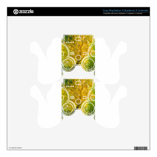 Yellow leaves of treetop with trunk in fall PS3 controller decals