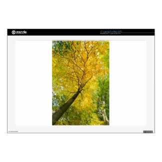 """Yellow leaves of treetop with trunk in fall skin for 17"""" laptop"""