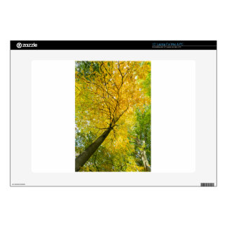 """Yellow leaves of treetop with trunk in fall skins for 15"""" laptops"""