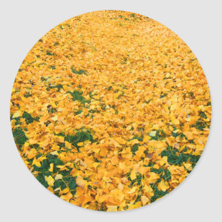 Yellow leaves stickers