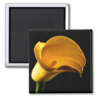Yellow Lilly 2 Inch Square Magnet