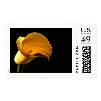 Yellow Lilly Calla Cala Lily Wedding RSVP Invite Postage Stamp