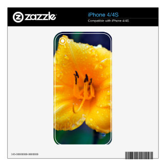 Yellow Lilly Flower iPhone 4S Skins