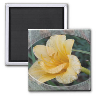 Yellow Lily 2 Inch Square Magnet