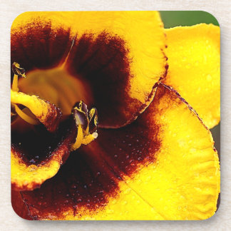 Yellow Lily Drink Coaster