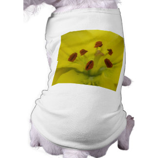 Yellow Lily Floral Dog Clothing
