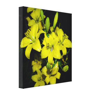Yellow Lily Gallery Wrap Canvas