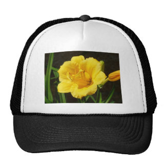 Yellow Lily hat cap