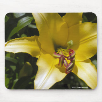 Yellow Lily Mouse Pad