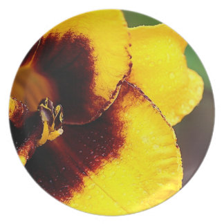 Yellow Lily Plate