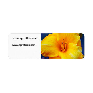 Yellow Lily Pollen Stems Label