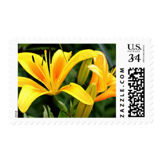 Yellow Lily Postage
