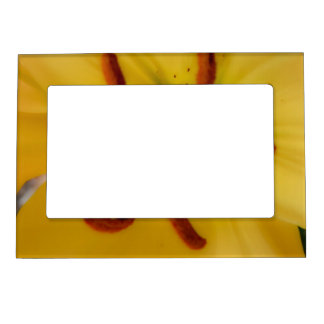 Yellow Lily Soft and Dreamy Magnetic Photo Frame