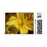 Yellow Lily Wedding Flowers Postage Stamps Stamps