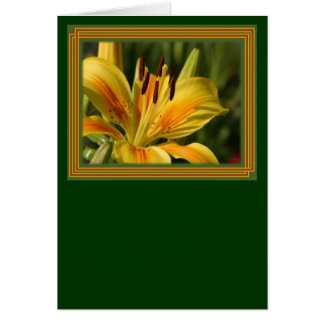 Yellow Lily With Decorative Border Card