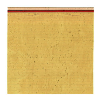 Yellow Lined School Paper Background Beverage Coaster