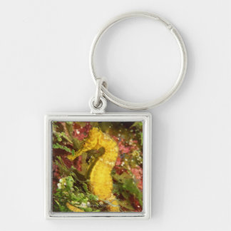 Yellow longsnout seahorse keychain