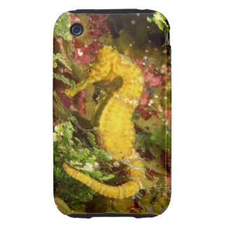 Yellow longsnout seahorse tough iPhone 3 cover