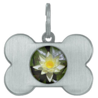 Yellow Lotus and lily pads Pet Name Tag