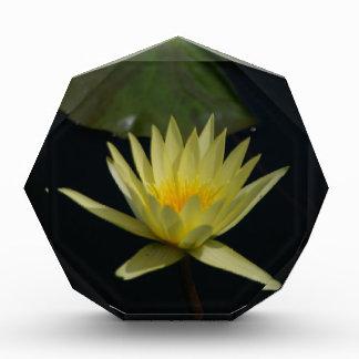 Yellow Lotus Waterlily Acrylic Award