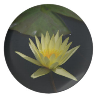 Yellow Lotus Waterlily Dinner Plate
