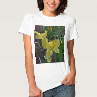Yellow Louisiana Beardless Iris Tee Shirt