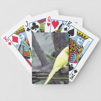 Yellow Lutino Ring Necked Parakeet in a tree Bicycle Playing Cards