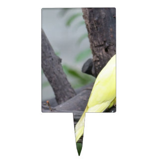 Yellow Lutino Ring Necked Parakeet in a tree Cake Topper