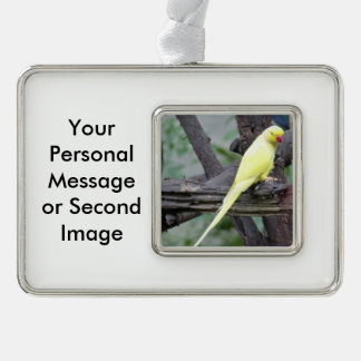 Yellow Lutino Ring Necked Parakeet in a tree Ornament