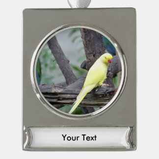 Yellow Lutino Ring Necked Parakeet in a tree Silver Plated Banner Ornament
