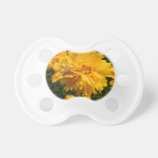 Yellow Macro Flower Chupete