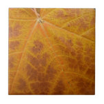 Yellow Maple Leaf Autumn Abstract Nature Ceramic Tile