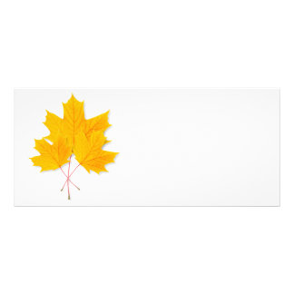Yellow maple leaves rack card template