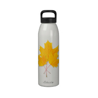 Yellow maple leaves reusable water bottles