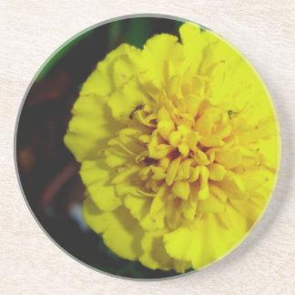 Yellow Marigold Flower Coaster