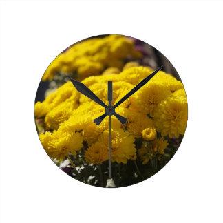Yellow marigolds bask in sunlight clock