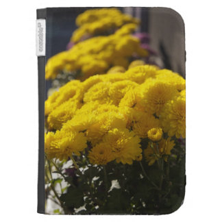 Yellow marigolds bask in sunlight kindle covers